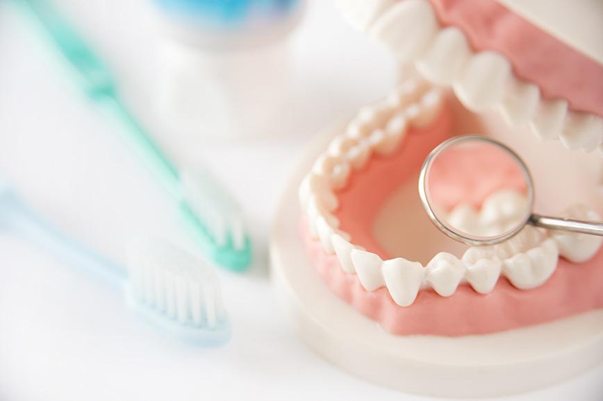 """""""予防歯科とは"""""""